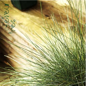 Album_sup-31